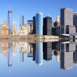 New York City Panorama — Stock Photo #24217631