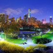 Central Park at Night - Stock Photo