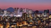 Tokyo Skyline and Fuji Mountain — Stock Photo