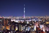 TokyoSkytree and Skyline — Stock Photo
