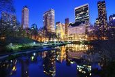 Central Park at Night — Stock Photo