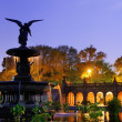 Bethesda Terrace in Central park — Stock Photo #26507451