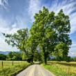 Cades Cove — Stock Photo