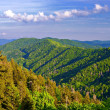Stock Photo: Newfound Gap