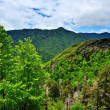 Smoky Mountains — Stock Photo #27422877