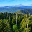 Smoky Mountains — Stock Photo #27422997