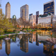 Stock Photo: New York City Central Park Lake