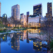 New York City Central Park Lake — Stock Photo
