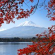 Mt. Fuji in the Autumn — Stock Photo #28500635