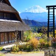 Village and Mt. Fuji — Stock Photo