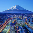 Stock Photo: Fuji And Yokohama