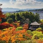 Ginkaku-ji Temple in Kyoto — Stock Photo #28501127