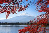 Mt. Fuji in the Autumn — Stock Photo