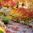 Постер, плакат: Fall Foliage in Kyoto