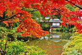 Japanese Style Gardens — Stock Photo