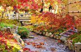 Fall listí v Kjótu — Stock fotografie