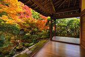 Fall Foliage in Ryoan-ji Temple in Kyoto — Stock Photo