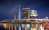 Tokyo Skyline at Sumida — Stock Photo
