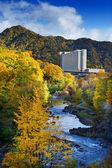 River in Hokkaido — Stock Photo