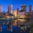 New York City Central Park South Skyline — Stock Photo #29399179