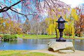 Boston openbare tuin — Stockfoto