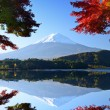 Mt. Fuji in the Autumn — Stock Photo #29836689