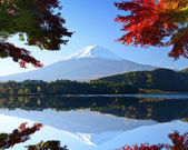 Mt. Fuji in the Autumn — 图库照片