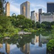 New York City Central Park South Skyline — Stock Photo