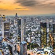 Frankfurt Germany Cityscape — Stock Photo