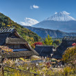 Mt Fuji and A Village — Stock Photo