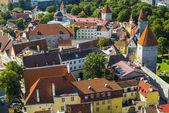 Tallinn Estonia Rooftops — Stock Photo