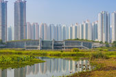 Hong Kong Wetlands Park — Stock Photo
