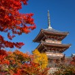 Kiyomizu Temple — Stock Photo #37559763