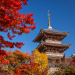 Kiyomizu Temple — Stock Photo