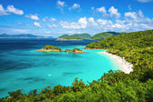 Trunk Bay St John — Stock Photo
