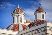 San Jaun Cathedral — Stock Photo