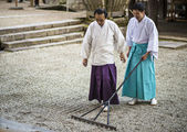 Shinto Priest Attending Zen Garden — Foto Stock
