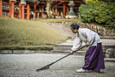 Shinto Priest Attending Zen Garden — Stock Photo
