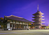 Nara at Kofukuji Temple — Stock Photo