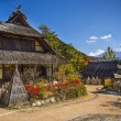 Iyashi No Sato Village — Stock Photo