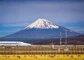 Mt. fuji — Zdjęcie stockowe