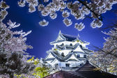Hikone Castle — Stock Photo