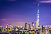 Tokyo Cityscape with Skytree — Foto de Stock