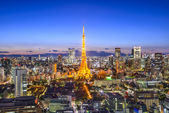 Tokyo Japan City Skyline — Stock Photo