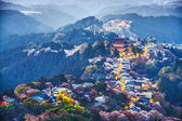 Yoshinoyama, Japan  — Stock Photo