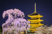 Todai-ji Pagoda in the Spring — 图库照片