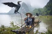 Cormorant Fisherman — 图库照片