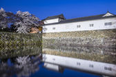 Hikone Castle — Stock Photo
