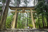 Kumano Sacred Trail — Stock Photo