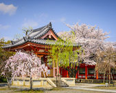 Temple in Kyoto — Stock Photo